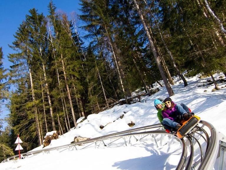 chamonix alpine luge